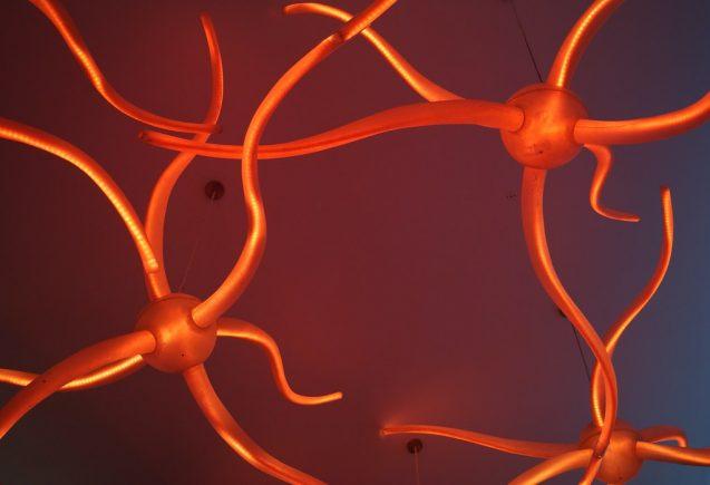 Next generation of neuronal cultures
